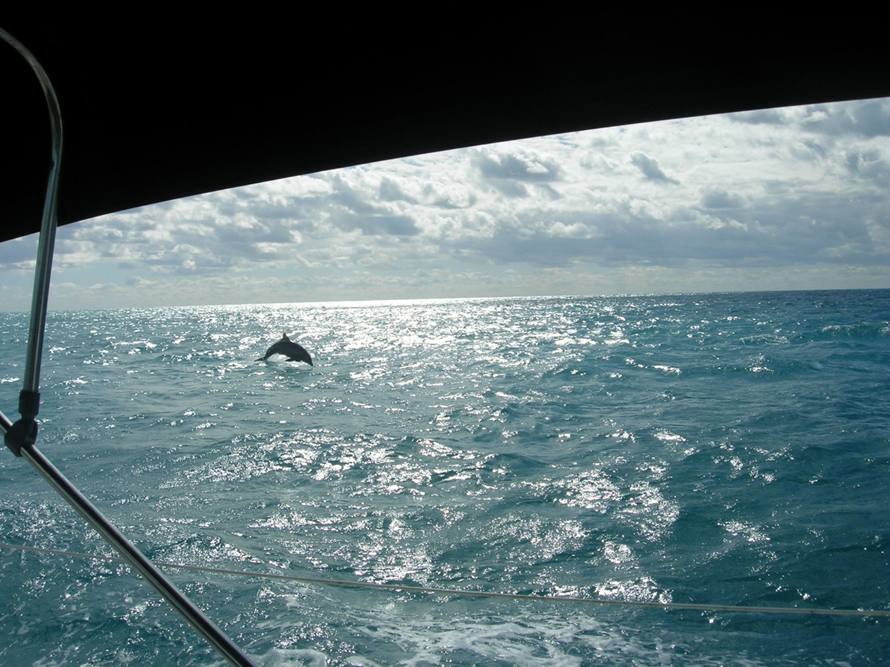 Veteran Sailing Association